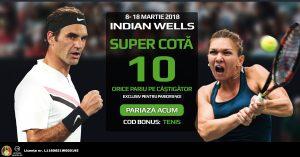 Pariurile pe castigator la meciurile de la Indian Wells iti aduc de 10X miza plasata